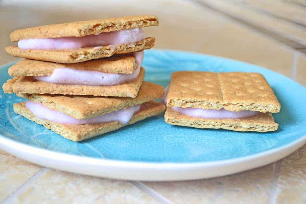 Easy Frozen Yogurt Sandwiches - a kid friendly summer snack or dessert