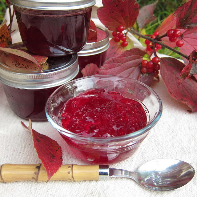 Highbush Cranberry Jelly, Photo by Nicole Pearce of Arctic Garden Studio