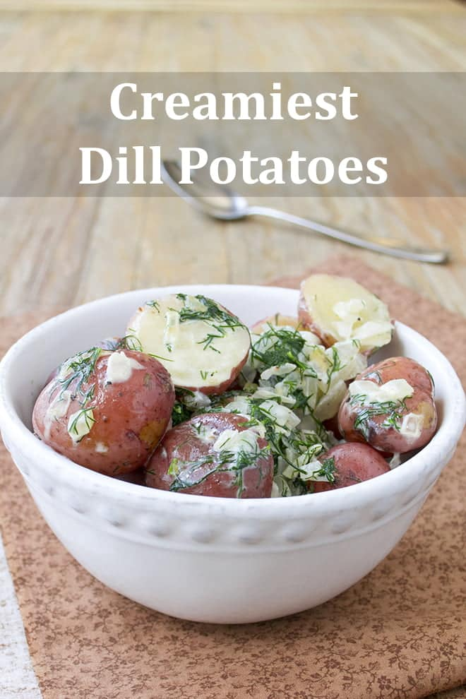 A white bowl with halved small red potatoes with lots of dill, onions, and some creamy sauce.
