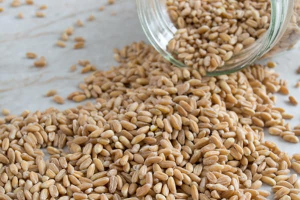 How to cook farro using three different methods