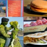 Epcot Flower and Garden Festival Food Review