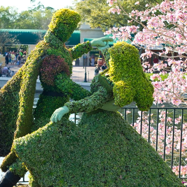 Beauty and the Beast Topiary at the Epcot Flower and Garden Festival 2013