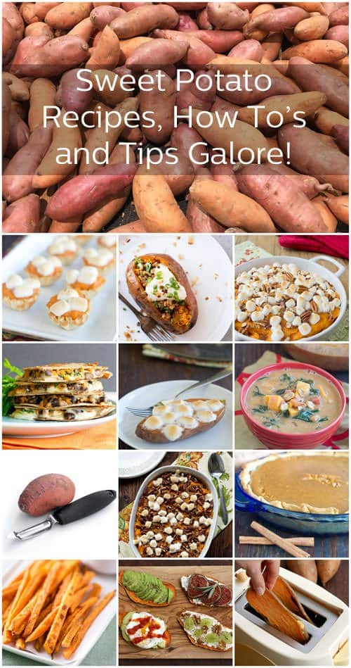 All About Sweet Potatoes on The Cookful