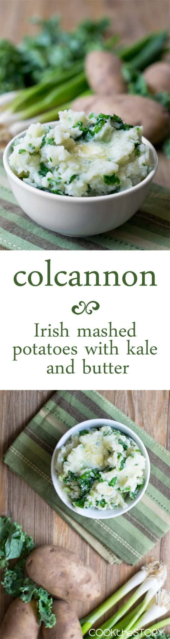 Colcannon: A simple Irish dish of mashed potatoes, kale, green onions and butter. A delicious way to celebrate St. Patrick's Day
