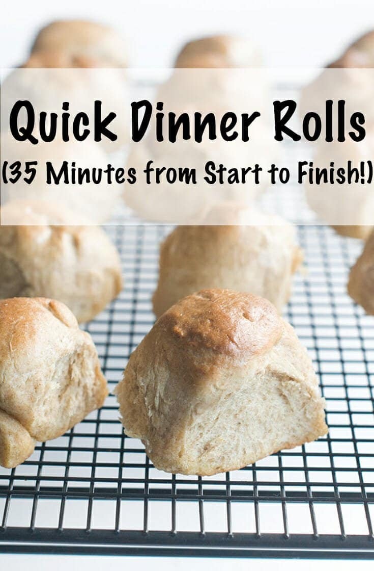 You can learn how to make easy homemade dinner rolls in 35 minutes so you don't have to go to the store. These are whole wheat but you can make them white, too. They are so quick you'll want to make them again and again. They are the best rolls ever. #bread #dinnerrolls #recipes #recipe