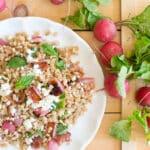 Farro and Roasted Radish Salad