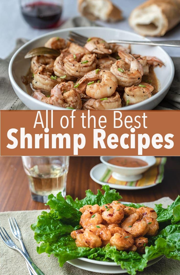 These are all of the best shrimp recipes for you to make to use up the shrimp you have on hand in the freezer. These recipes are special, but they\'re also easy.
